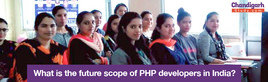 What is the future scope of PHP developers in India?