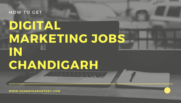 digital marketing jobs in chandigarh