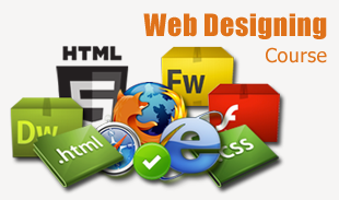 How to get Website Designing Jobs in Chandigarh?