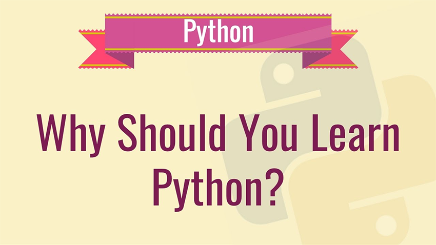 why-should-learn-python