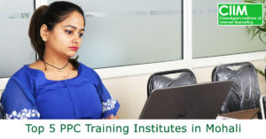 Top 5 PPC Training Institutes in Mohali