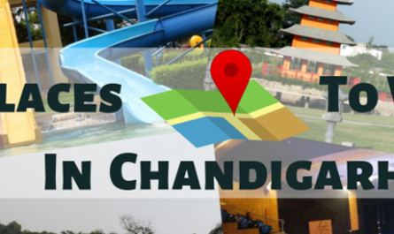 Five Best Places In Chandigarh