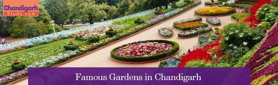 Famous Gardens in Chandigarh