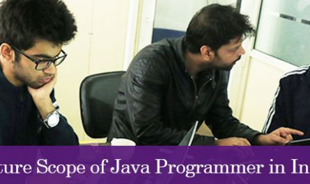 Future Scope of Java Programmer in India