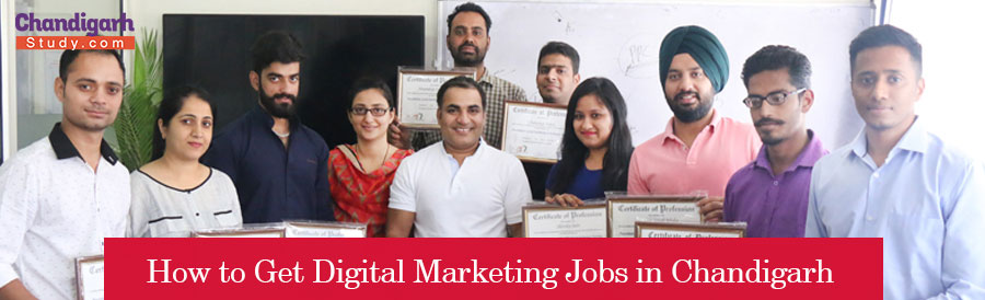 How to Get Digital Marketing Jobs in Chandigarh