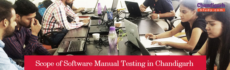 Scope of Software Manual Testing in Chandigarh