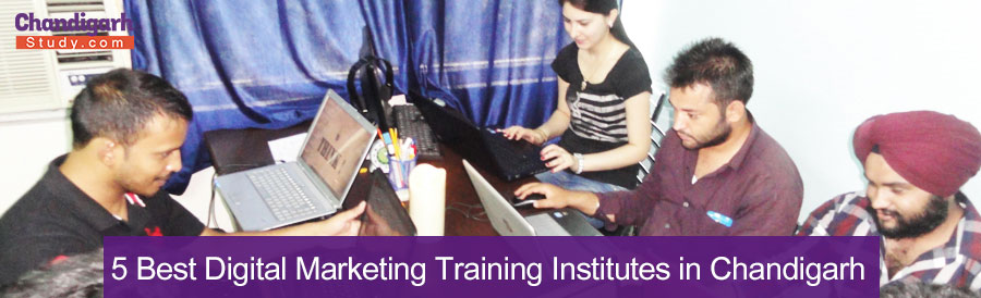 5 Best Digital Marketing Training Institutes in Chandigarh
