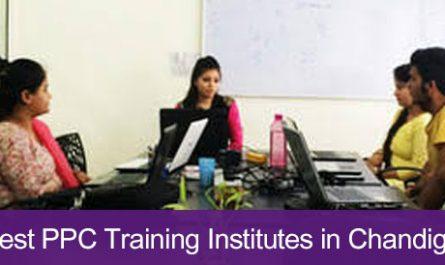 5 Best PPC Training Institutes in Chandigarh