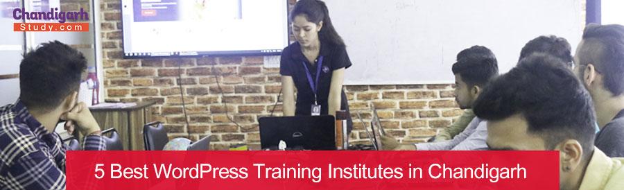 5 Best WordPress Training Institutes in Chandigarh