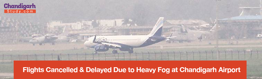 Flights Cancelled & Delayed Due to Heavy Fog at Chandigarh Airport