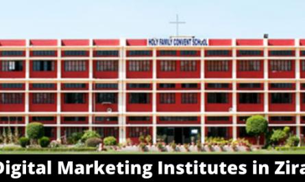 Best Digital Marketing Institutes in Zirakpur