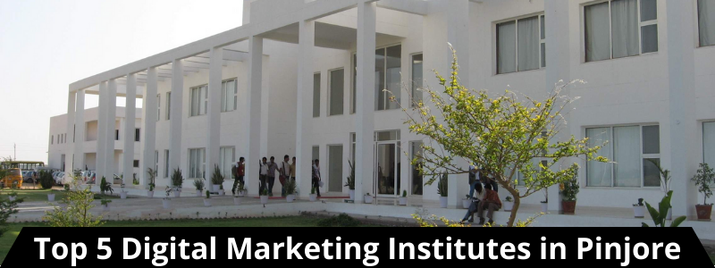 Top 5 Digital Marketing Institutes in Pinjore