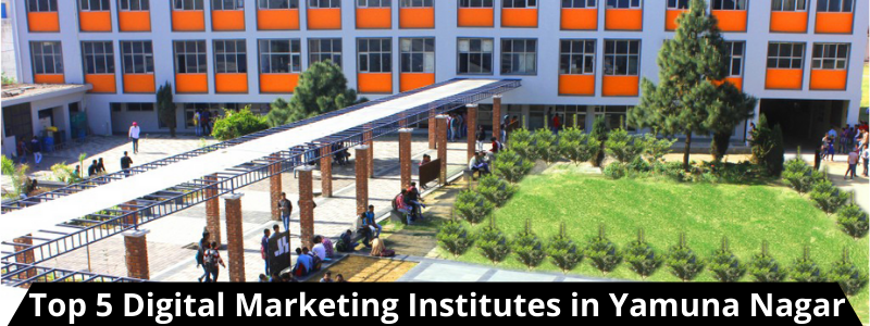 Top 5 Digital Marketing Institutes in Yamunanagar