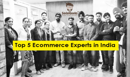 Top 5 Ecommerce Experts in India